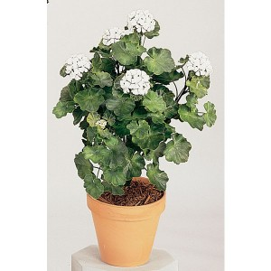 Product Highlight: Artificial Outdoor Geraniums