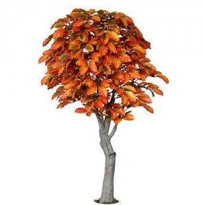 Decorate for Fall with the Artificial Coffee Tree