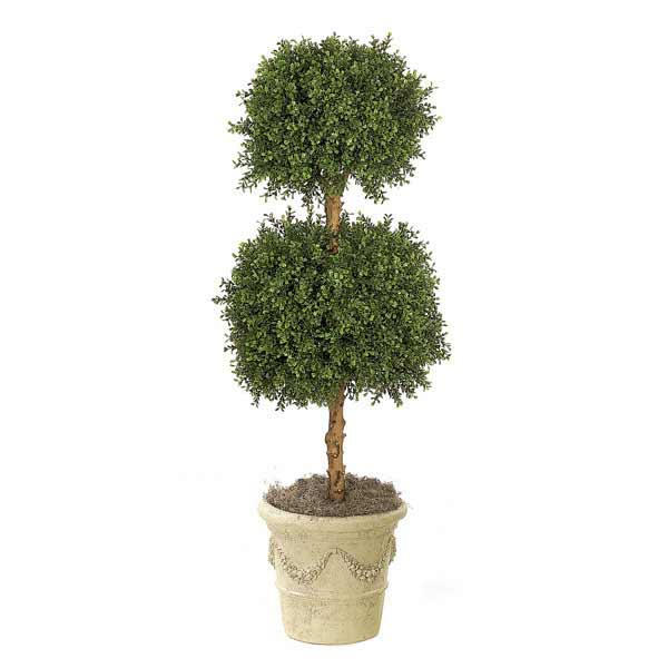 Boxwood Double Ball Topiary