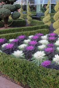 Low Maintenance Manicured Gardens