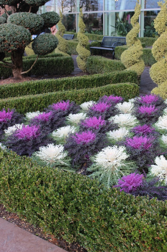 Colorful Flower Beds In Front Of House