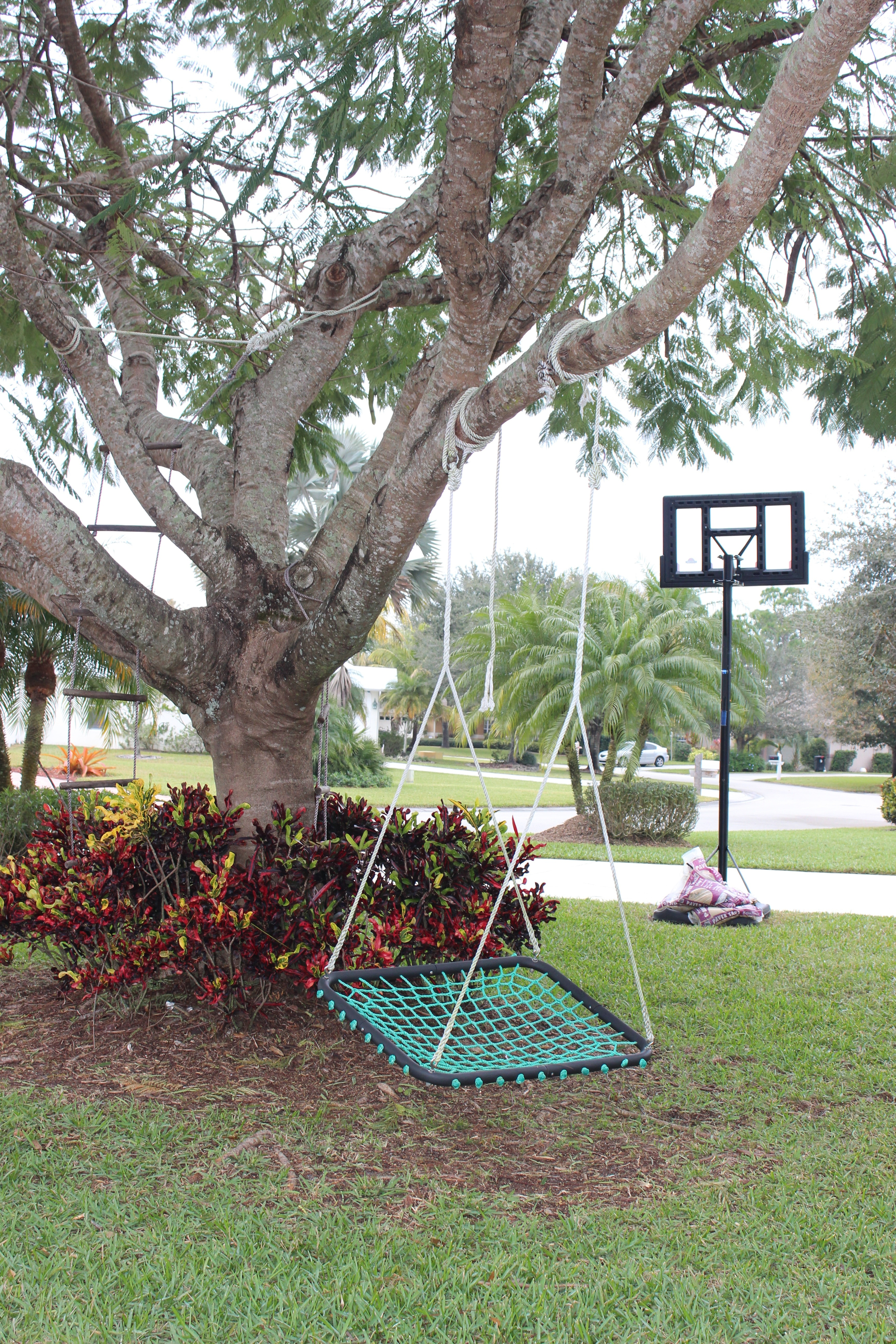 Tree Swings Creating A Front Yard Play Space With Tree Swings