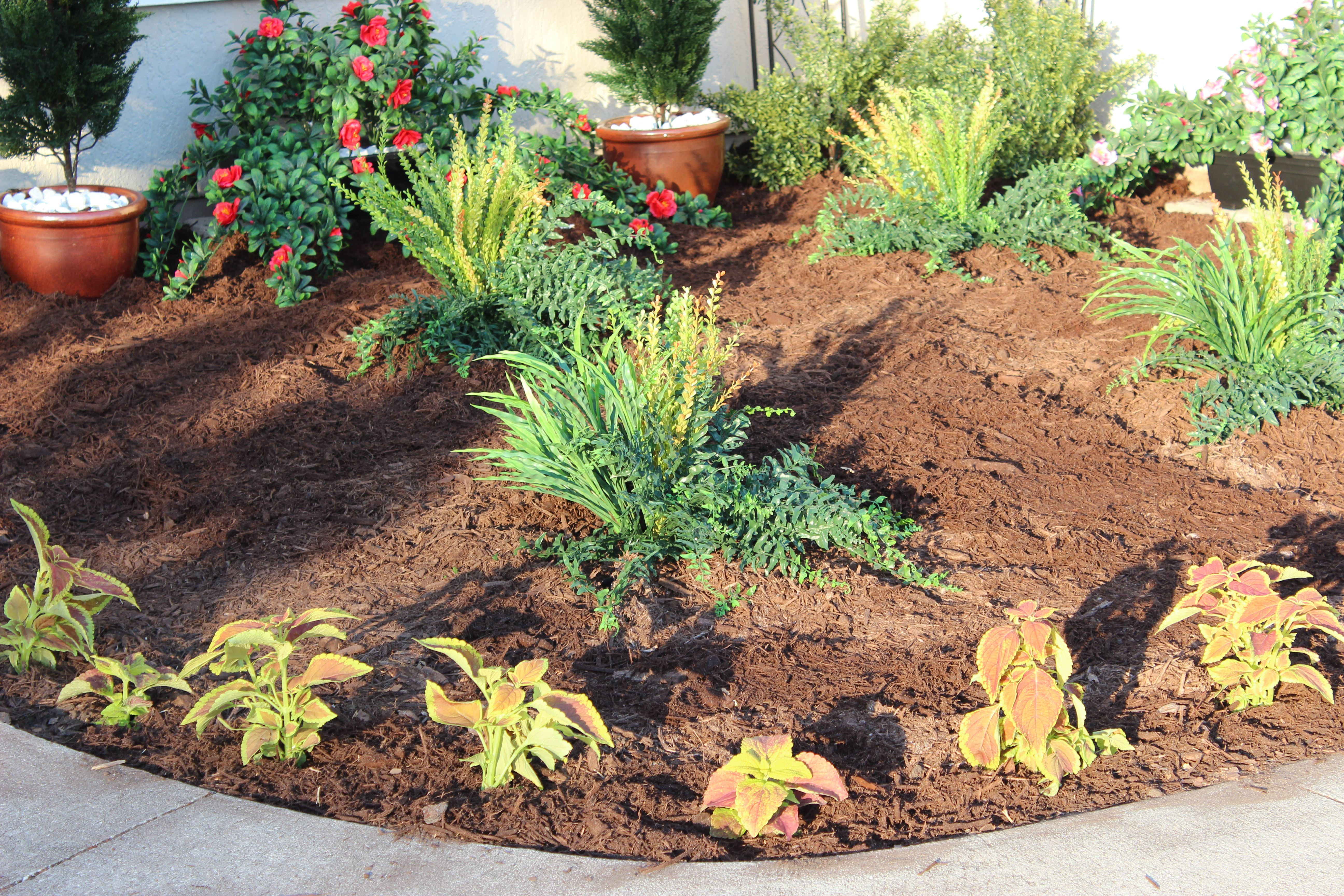 Layout For Artificial Outdoor Plants