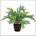 Artificial Outdoor Sequoia
