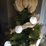 Sand Dollar Ornaments