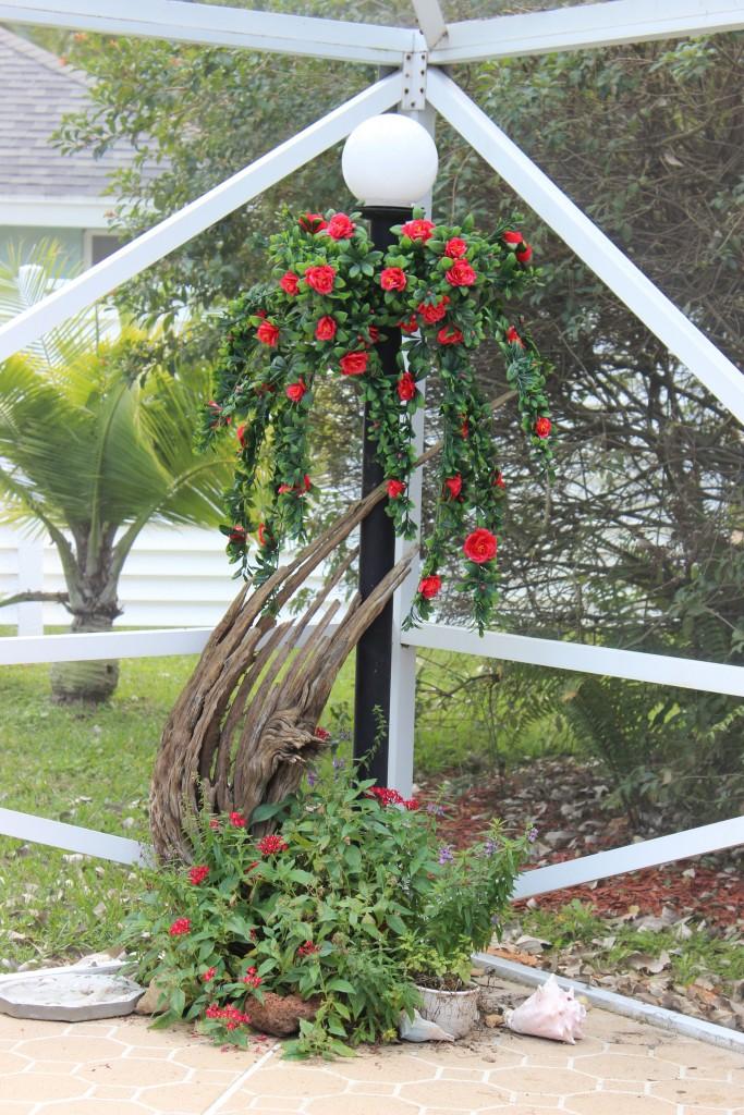 Azaleas on a Light Pole