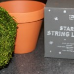 DIY Lighted Topiary