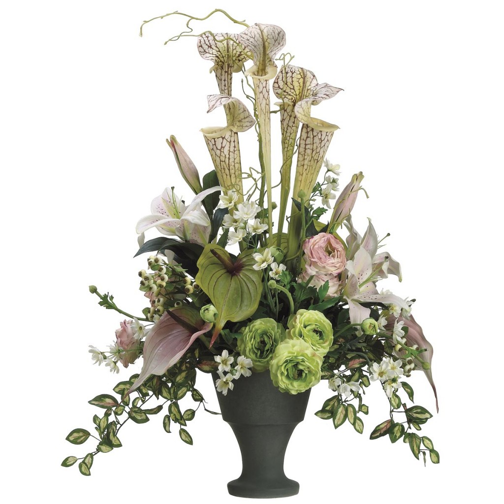 Pitcher Plant, Anthurium & Lily Arrangement
