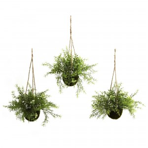 5 Ways to Use Plant Hooks in Your Garden
