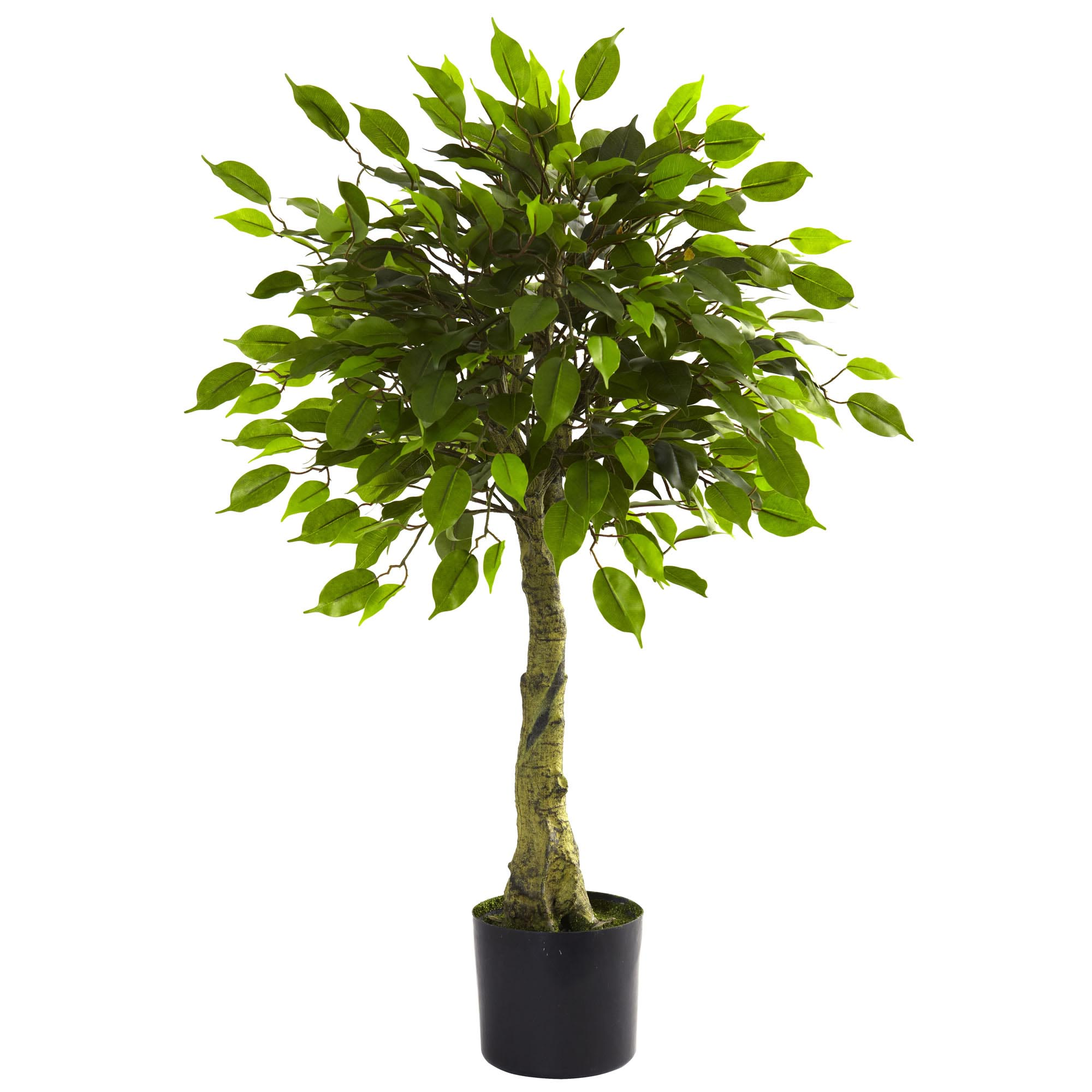 fake ficus tree 10 artificial outdoor trees you re sure to 3659