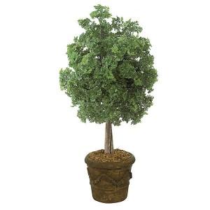 50 Inch Ming Arelia Tree