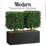 Modern Topiaries & Hedges