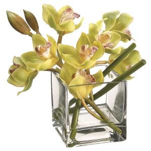 8-Inch Green Cymbidium Orchid