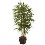 Bamboo Tree 1