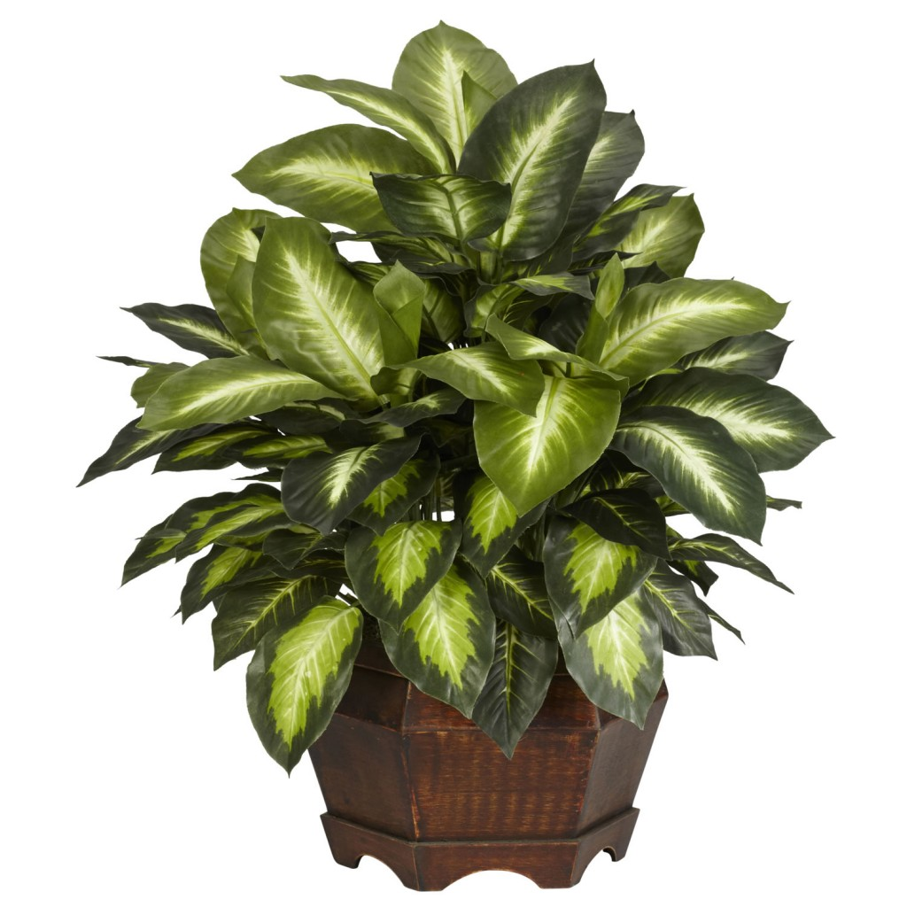 Dieffenbachia Indoor Plant. Indoor Artificial Plants