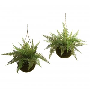 18-inch Outdoor Leather Fern