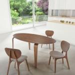 Mid Century Modern Dining Set