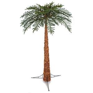 Christmas Palm 2