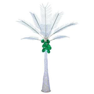 Christmas Palm 3