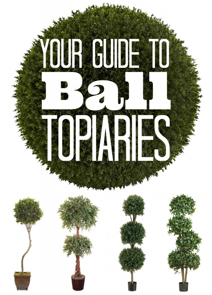 Guide to Ball Topiaries