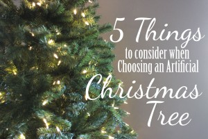 5 Things to Consider When Choosing a Christmas Tree