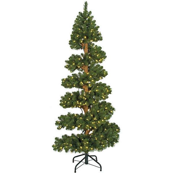 Spiral Spruce Tree