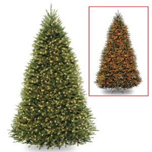 A Closer Look at Christmas Trees with Color-Changing Lights