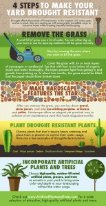 4 Ways to Make Your Yard Drought Resistant (Infographic)
