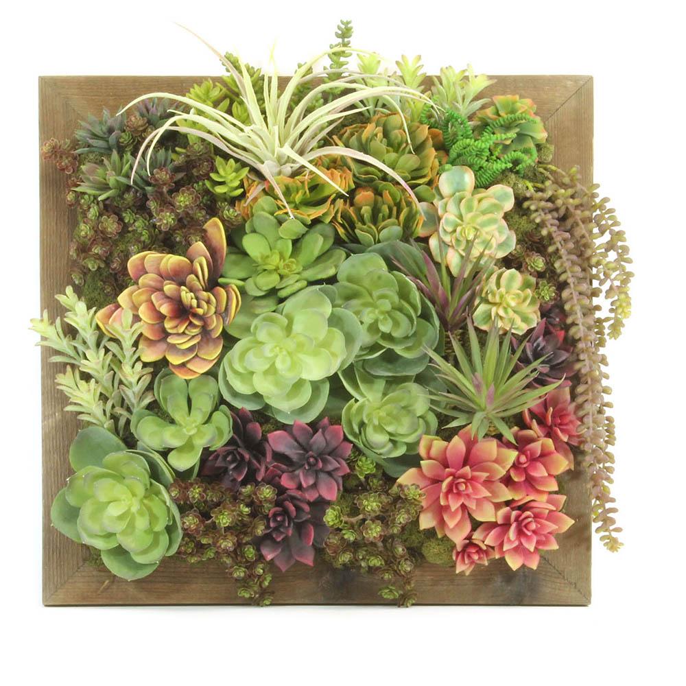 Succulent Wall Garden