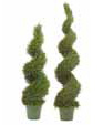 View all Topiaries