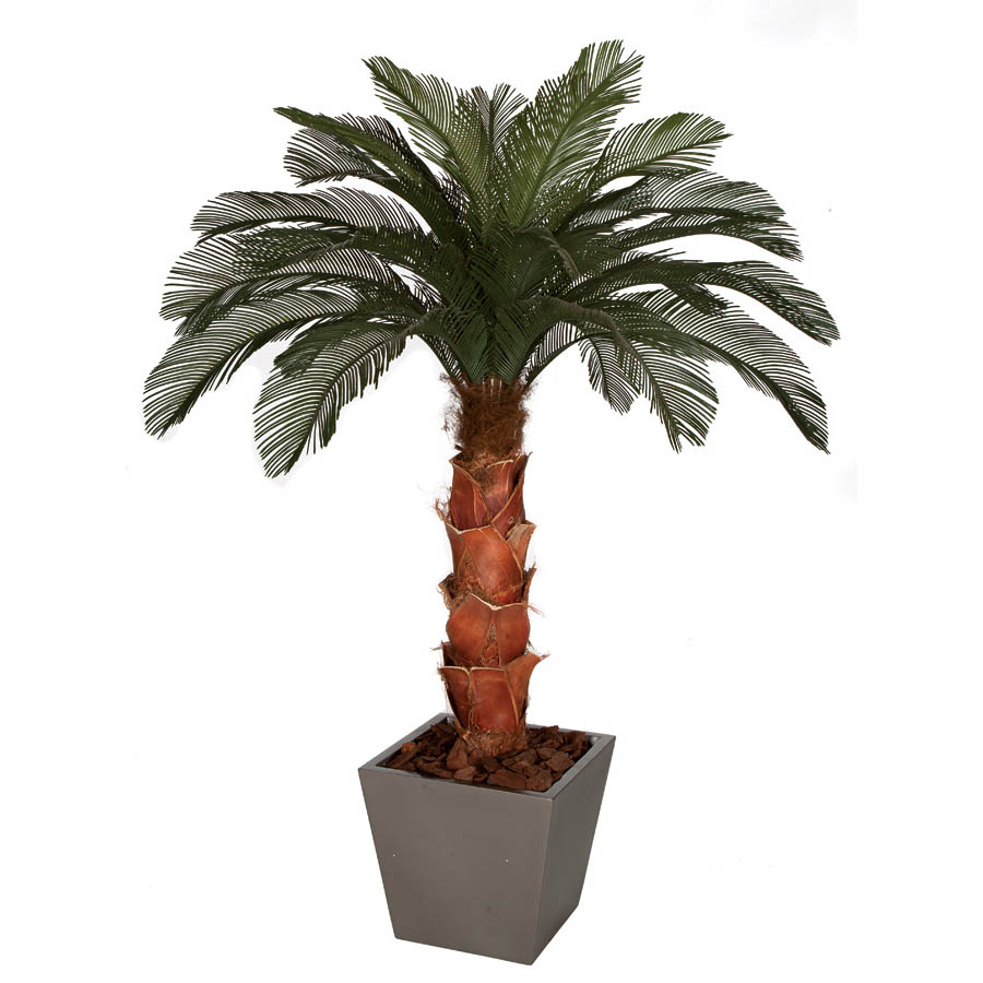 6 foot Artificial Outdoor Cycas Palm Tree: Natural Trunk & 24 Fronds A-154300