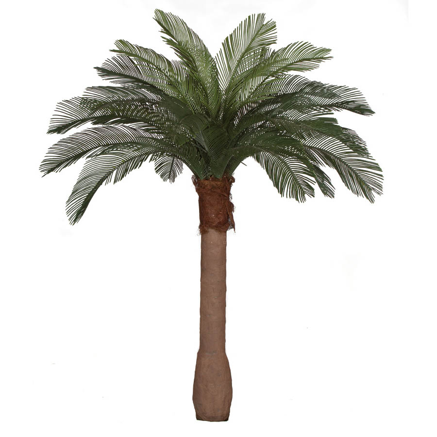 6 foot Artificial Outdoor Cycas Palm Tree: Smooth Synthetic Trunk & 24 Fronds A-154340