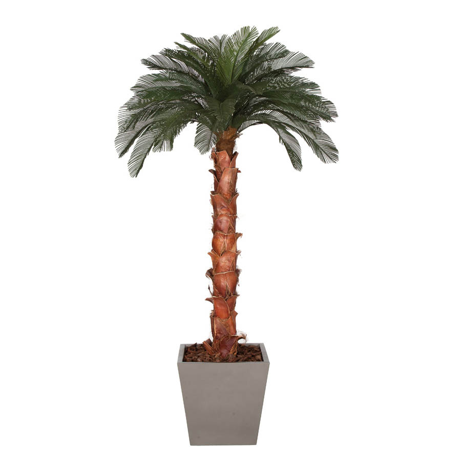 9 foot Artificial Outdoor Cycas Palm Tree: Natural Trunk & 36 Fronds A-154380