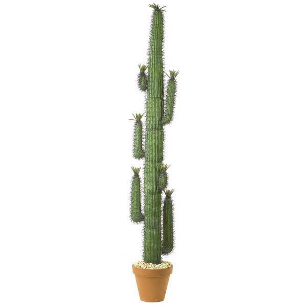 Select Artificial-Saguaro-Cactus-Unpotted Product Picture 339