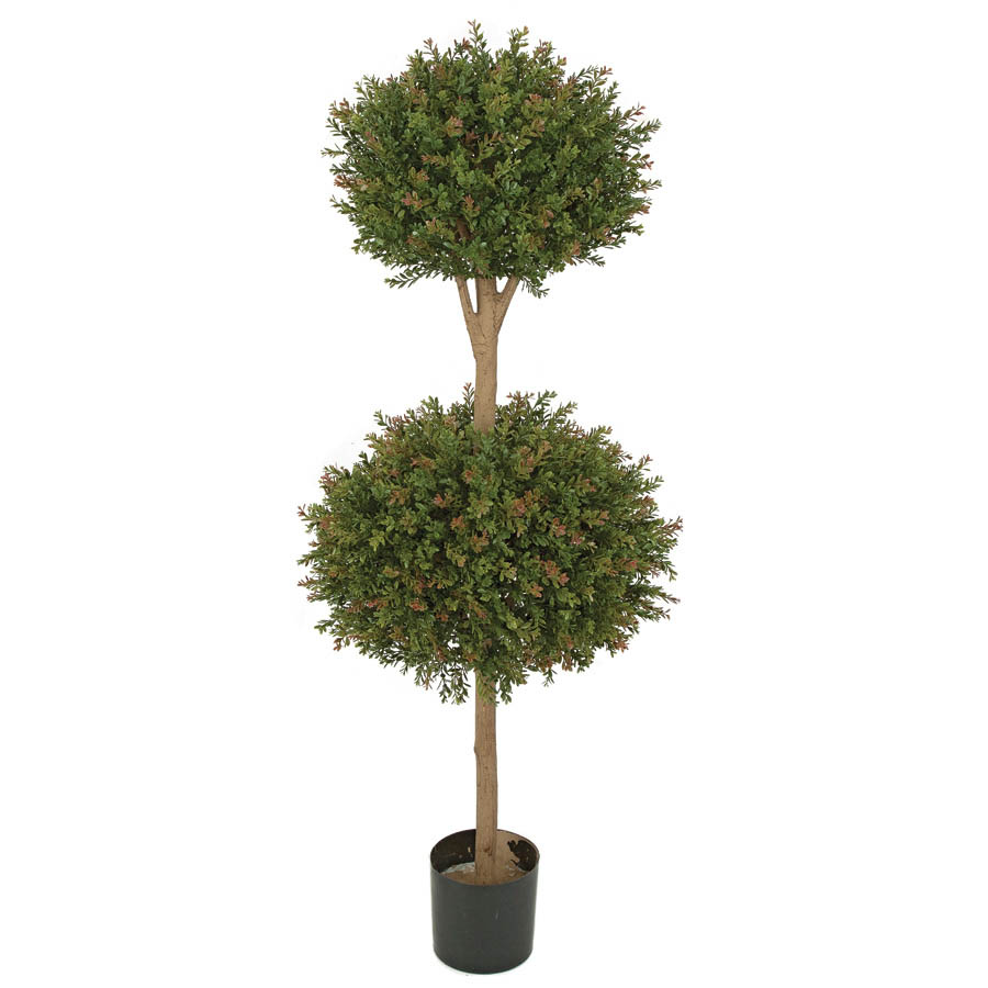Purchase Outdoor Wintergreen Boxwood Double Ball Topiary Limited Uv Product Photo