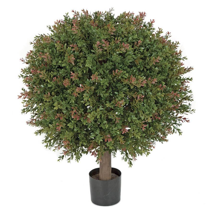 Precious H Outdoor Wintergreen Boxwood Ball Limited Uv Product Photo