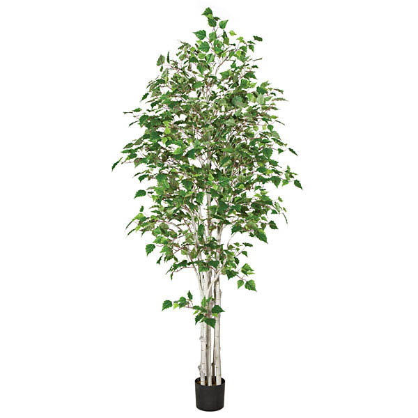 Ultimate Birch Tree Synthetic Trunks Potted 21 1559