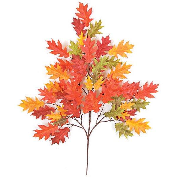 Pretty Bright Fall Color Fire Retardant Pin Oak Branch  Product Photo