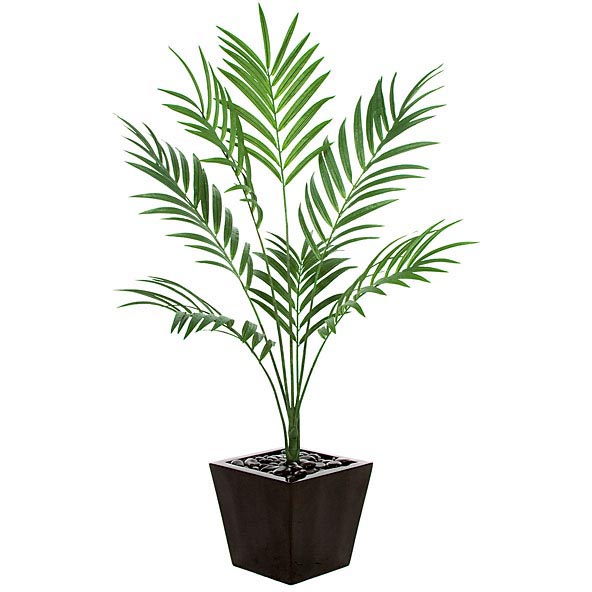 6.5 foot Fire Retardant Kentia Palm: Potted PR-86000