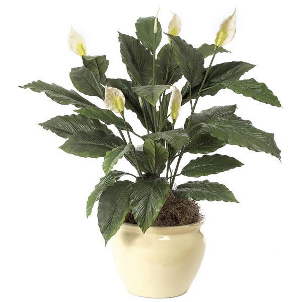 Indoor Floor Plants | Floor Fake Plants | Artificial Indoor Plant