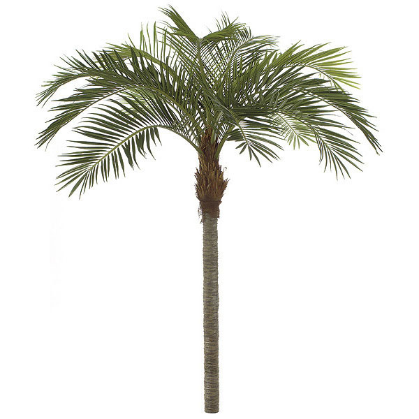 Best-selling Coconut Palm Synthetic Trunk 11 2245