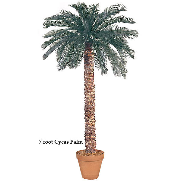 8 foot Artificial Outdoor Cycas Palm with 36 Fronds and Natural Trunk A-012