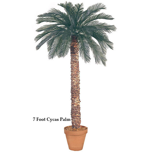 5 foot Artificial Outdoor Cycas Palm with 36 Fronds and Natural Trunk A-015