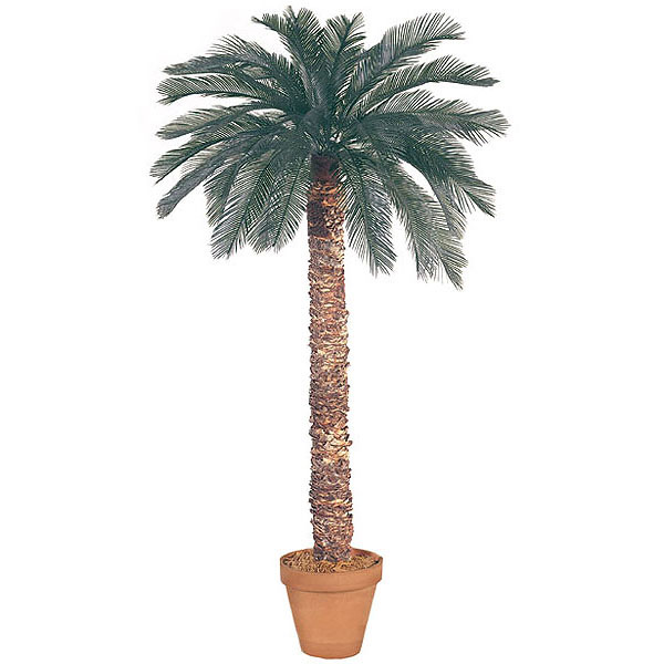 7 foot Artificial Outdoor Cycas Palm with 36 Fronds and Natural Trunk A-018