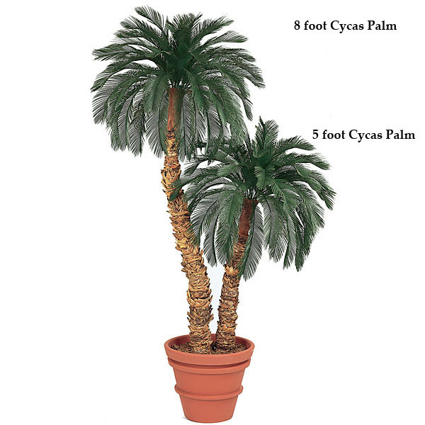 11 Foot Artificial Outdoor Cycas Palm With 48 Fronds: Single Trunk