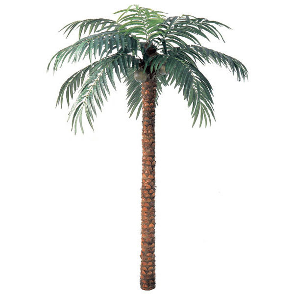 Optimal Artificial Coconut Palm Natural Trunk Product Photo