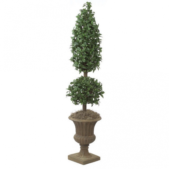Slim Logo 6 Foot Laurel Cone And Ball Topiary Potted