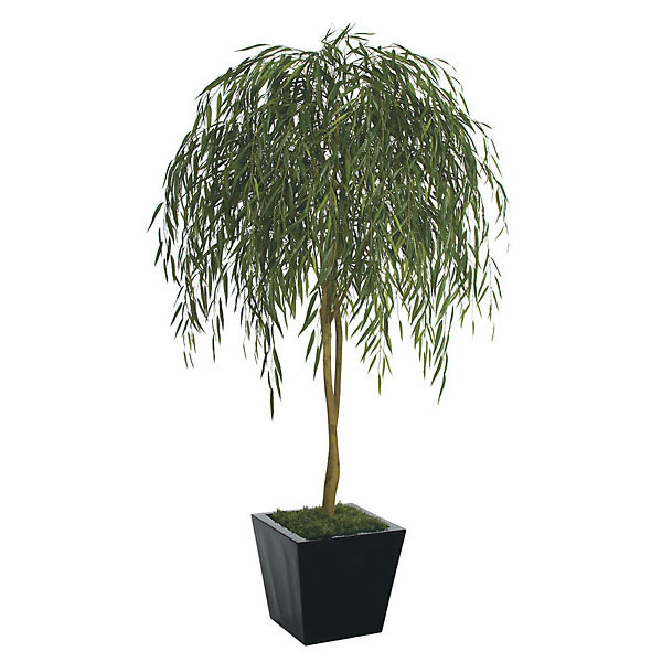 Select Willow Tree Product Photo