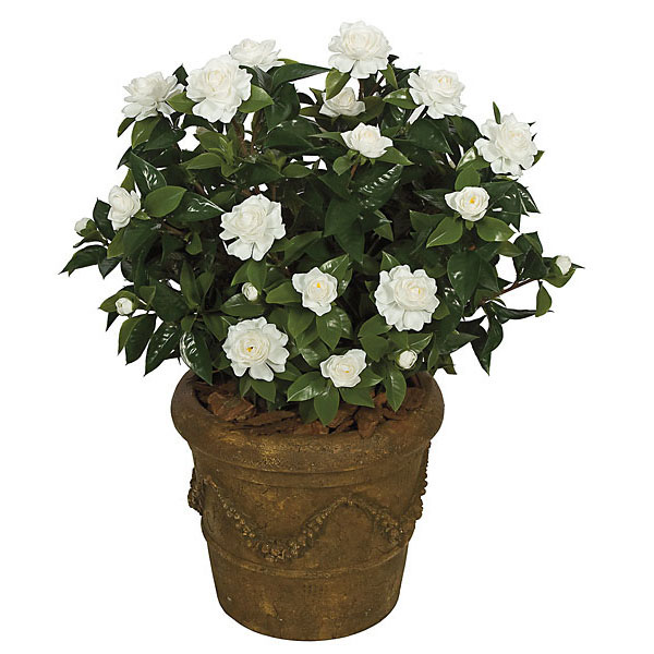 28 Inch Artificial Outdoor Gardenia Flowers: Red And White