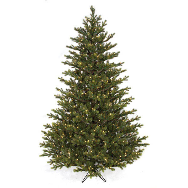Stylish English Fir Tree Clear Leds Product Photo
